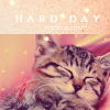 Cecilie: Stock - Kitty hard day
