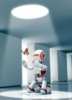 robot_s_hobotom
