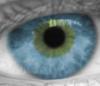 глаз мой