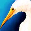 Fly Water Bird - Me