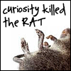 Curiosity Killed the Rat