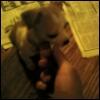 quinnalb userpic