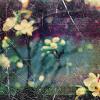 rustedrhubarb userpic