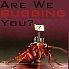 Are we BUGGING you?