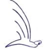 ungeniusloci