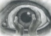 schizoid_case userpic