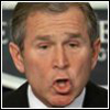 bushism_a_day entry icon
