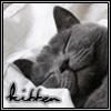 Kitten: Kittens - Sleepy Kitten
