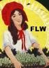 Frank Lloyd Wrong: ftbp