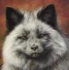 Silbern Fuchs 2