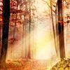 Ria: autumn light