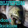 coquillage: Bluefish Don't Kickbox
