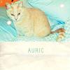 WeHo M.: Auric!