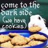 The Poo: cookies