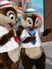 chip and dale sailors
