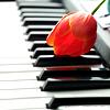 (.Piano.)