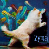 zyna_kat userpic