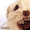 goldavan userpic