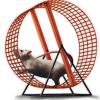 Mouse Wheel