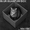 Why pick one?: physics cat