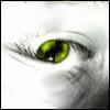 maindue userpic
