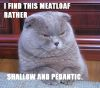shallow and pedantic
