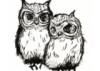 art » owls