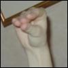 mortis_de_hand userpic