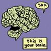 this is ur brain
