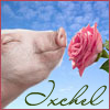 ixchel-pig&rose
