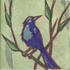 bird_voyeur userpic