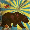 l'ours et papillon