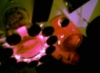 sansanesthesia userpic