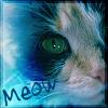 wiccabrat userpic