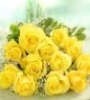 bradygirl_12: yellow roses