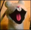 doodle_bunny userpic