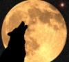 ThroughAnAmberFocus: Yellow Moon