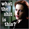 XF - Scully What the shit?