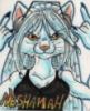 kitty neshamah