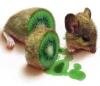 kiwi, food, mouse