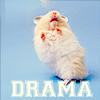 Mitten: drama