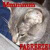 Fabreeze