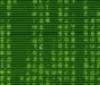 cyber, code