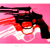 gun warhol