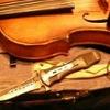Tiny Diona's Violin Case