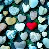 kellyrfineman: Heart pebbles