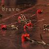 Theatre: Bravo Roses (Chicago)
