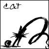 кот каракуля