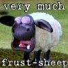 sheep: very much frust-sheep