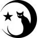 cat pagan moon crescent